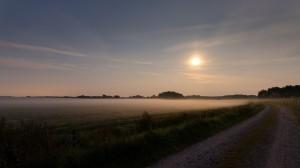 Nebelfelder